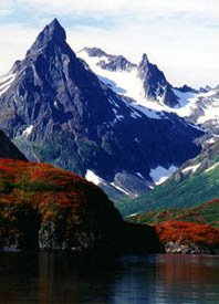 fly fishing for Trout and Salmon in Alaska